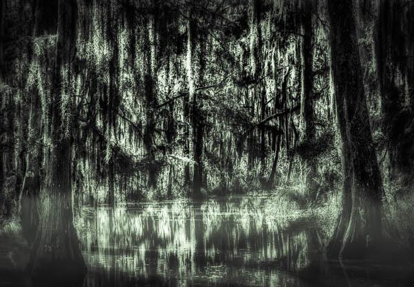 Spooky Louisiana Bayou